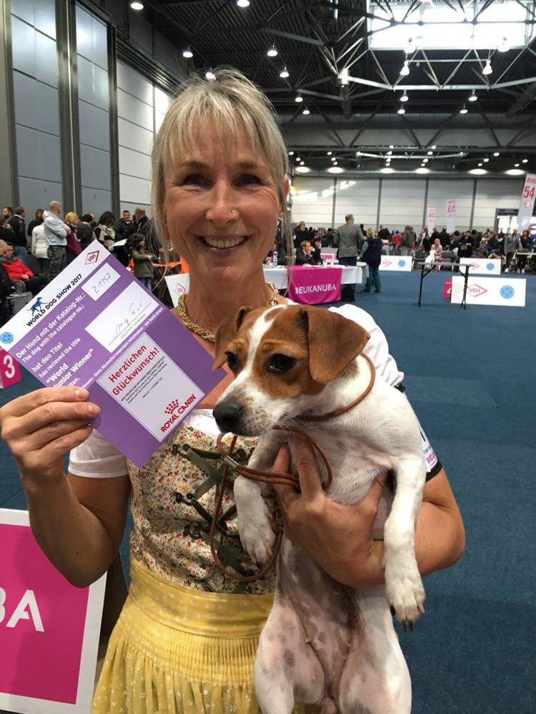 Wilma ist World Dog Show Jugendchampion der Gårdhundmädels